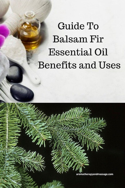 Aromatherapy supplies with the words Guide To Balsam Fir Essential Oil Benefits and Uses and photo of balsam fir tree needles.