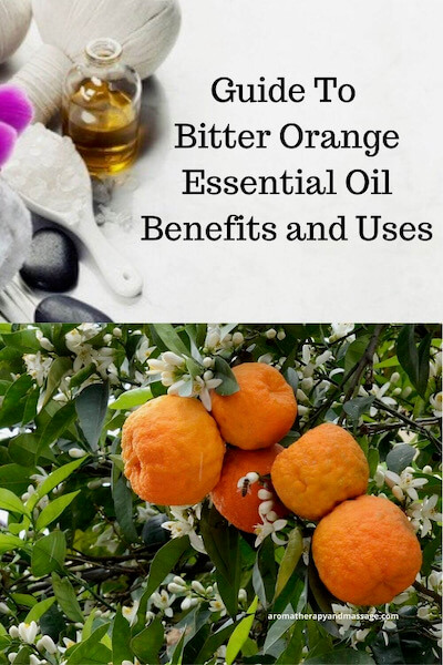 Aromatherapy supplies with the words Guide To Bitter Orange Essential Oil Benefits and Uses and photo of bitter orange tree.