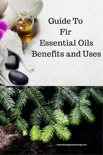 Aromatherapy supplies with the words Guide To Fir Essential Oils Benefits and Uses and photo of Grand fir needles.