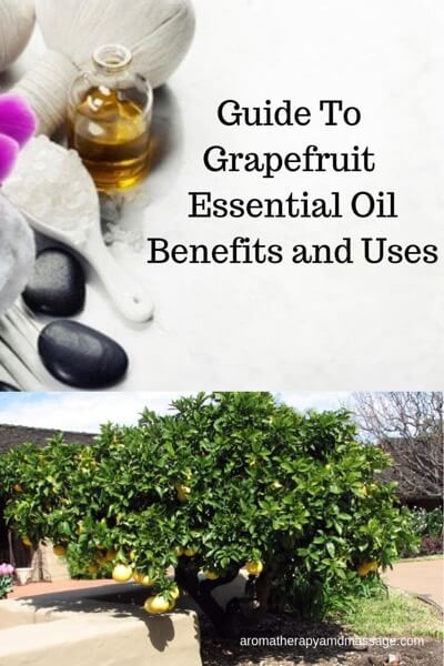 Guide To Grapefruit Essential Oil and Its Benefits and Uses In Aromatherapy
