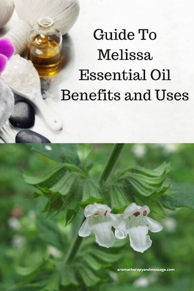 Aromatherapy supplies with the words Guide To Melissa Essential Oil Benefits and Uses and picture of a melissa (lemon balm) plant.