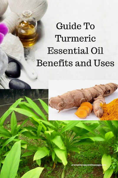 Aromatherapy supplies with the words Guide To Turmeric Essential Oil Benefits and Uses and photo of turmeric root and powder and photo of turmeric plant.