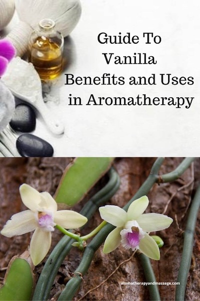 Aromatherapy supplies with the words Vanilla Benefits and Uses In Aromatherapy and photo of a vanilla plant.