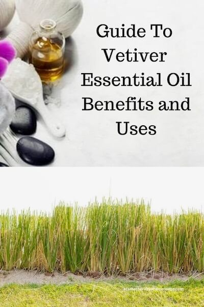 Aromatherapy supplies with the words Guide To Vetiver Essential Oil Benefits and Uses and photo of vetiver grass.