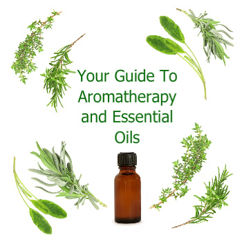Essential Oil Bottle Surrounded By Leaves | Aromatherapy Guide