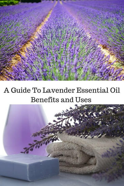 A Guide To Lavender Essential Oil and Its Benefits and Uses | Lavender field on top and lavender soap, oil, and flowers on bottom.