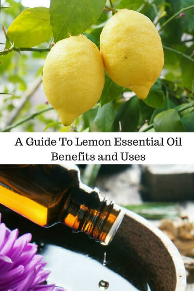 A Guide To Lemon Essential Oil and Its Benefits and Uses | Top: Lemons. Bottom: Essential oil dropping into water.