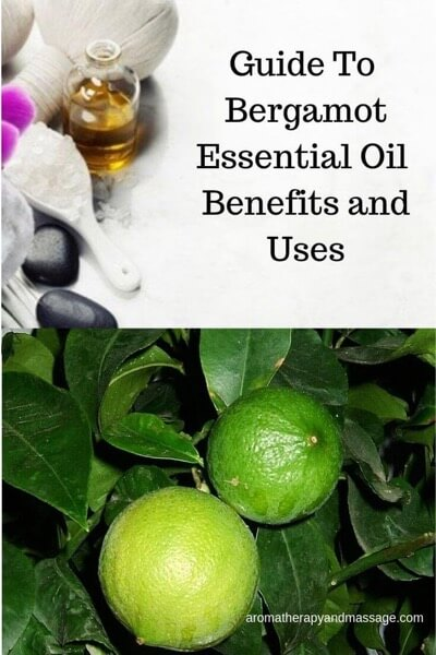 A Guide To Bergamot Essential Oil and Its Benefits and Uses
