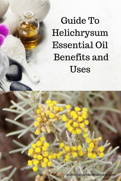 A Guide To Helichrysum Essential Oil and Its Benefits and Uses In Aromatherapy | Picture of aromatherapy supplies and helichrysum flowers