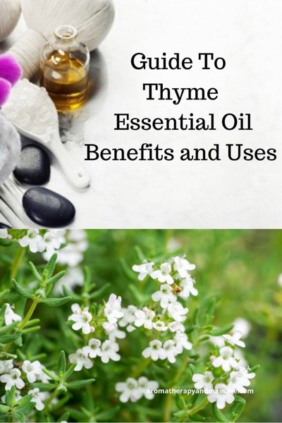 A Guide To Thyme Essential Oil and Its Benefits and Uses | photos of aromatherapy supplies and the thyme plant