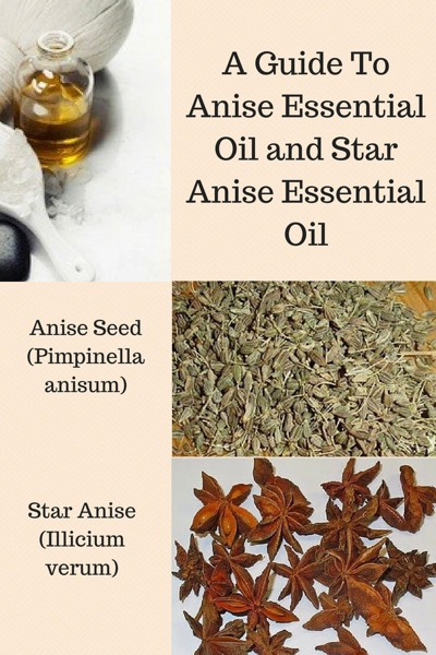A Guide To Anise Essential Oil and Its Benefits and Uses in Aromatherapy