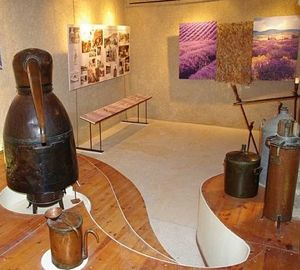 Display of lavender distillation equipment in the history of aromatherapy.