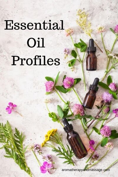 Image of essential oil bottles and plants with the words Essential Oils Guide