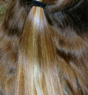 Using Essential Oils for Dry Hair